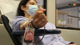 Colheita sangue MTC